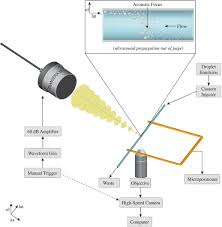 phase transition thresholds and vaporization phenomena for