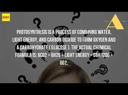 Is Light Energy What Is The Equation For Photosynthesis Youtube