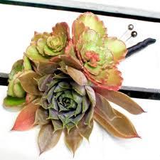 Succulent Boutonniere Boutonnieres Foxgloves Flowers Victoria Bc Florist