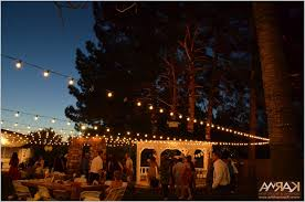 Outdoor Up Lighting For Trees Outdoor Up Lighting For Trees Cozy Karma Event Lighting For