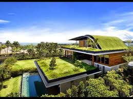 modern house with green roof outdoor plants for a green roof