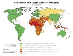 World Wide Map Womanstats Maps