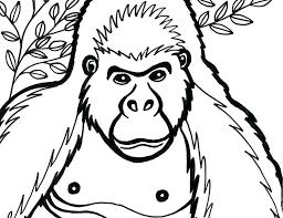 coloring page of gorilla gorilla coloring page resume ideas namanasa com