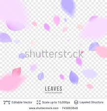 wedding backdrop vector pink pastel petals on transparent background stock vector