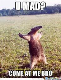 Silly Meme - why you so silly anteater by just2awesome1 meme center