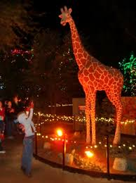 phoenix zoo lights members only holidays in phoenix at zoolights