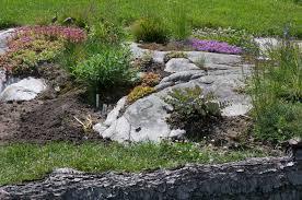 Water Rock Garden by Rock Garden Expansion Review U2013 Botanicalartstalk