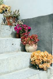 64 outdoor steps decorated with flower planters and pots pictures