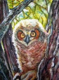 The Barn Owl Carol Stream Carol Warner Artwork For Sale Boulder Co United States