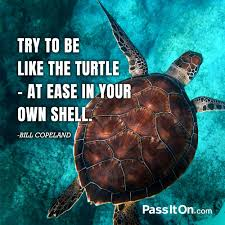 The Quot Be Like Bill - try to be like the turtle at ease in your own shell bill