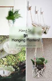 Diy Hanging Planters by 10 Darling Diy Hanging Planters Astronautcafeideas Pinterest