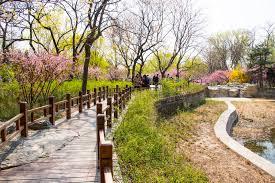 Beijing Botanical Garden Asia Beijing Botanical Garden Scenery The Trail