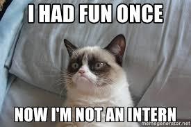 Grumpy Cat Meme I Had Fun Once - i had fun once now i m not an intern grumpy cat good meme generator