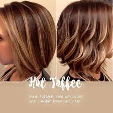 honey brown haie carmel highlights short hair best 25 highlights for short hair ideas on pinterest balyage on