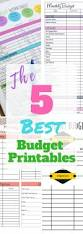 Budget Spreadsheet Uk by The 25 Best Monthly Budget Template Ideas On Pinterest Family