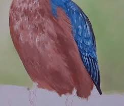 how to paint a kingfisher in acrylic u2014 online art lessons
