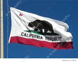 California Flag Bear Picture Of California Flag