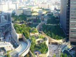roof garden plants roof garden in osaka japan plants might positively contribute to