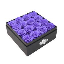 purple roses black see through square box purple roses blossoming