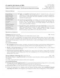 Finance Objective For Resume Finance Director Resume Objective Director Of Finance Resume