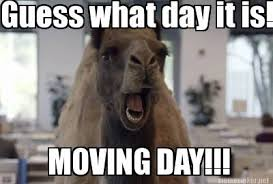 Camel Memes - meme maker hump day camel generator