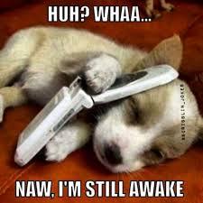 Who Still Up Meme - funny memes naw i m still awake w630