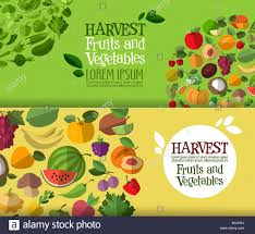 food templates free download fruits and vegetables vector logo design template fresh food or stock photo fruits and vegetables vector logo design template fresh food or harvest icon