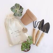 kit mini jardim bo home botanical home decor elo7