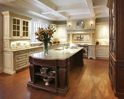small kitchens designs ideas pictures kitchen shaker kitchen custom kitchen cabinets traditional