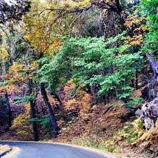 10 country roads southern california fall foliage