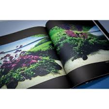 origin of creation takashi amano biography book by ada for 55