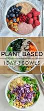 best 25 plant based meals ideas on pinterest plant based diet