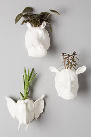 sahel wall planter anthropologie