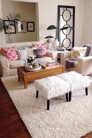 Inexpensive Apartment Decorating Ideas by Cozy Cheap Apartment Decorating Ideas Apartment Interior Living