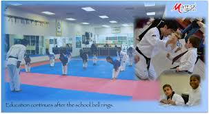 Tae Kwon Do Camps at Majest Martial Arts Fredericksburg and