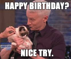 Funny Birthday Memes Tumblr - grumpy cat happy new year happy new year damn theres another one