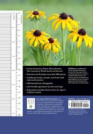 portland native plant list wildflowers of new england a timber press field guide ted