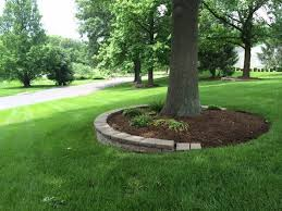 Backyard Trees Landscaping Ideas The 25 Best Landscape Around Trees Ideas On Pinterest