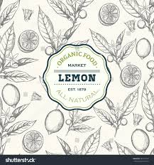 lemon tree design template vector seamless stock vector 387711574