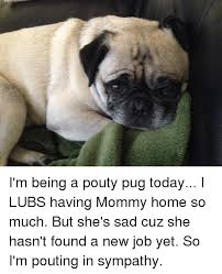 Sad Pug Meme - 7 i m being a pouty pug today i lubs having mommy home so much but