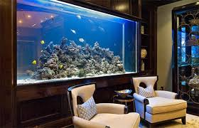 aquarium in living room feng shui centerfieldbar com