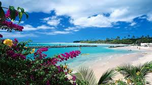 top 10 tobago hotels in trinidad and tobago 67 hotel deals on