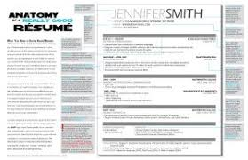 Show An Example Of A Resume by Examples Of Resumes How Creating An Infographic Resume Helped Me