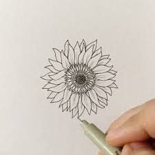 gallery sketching of a giant sunflower drawing art gallery