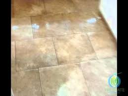 Grout Cleaning Service 25 Unique Floor Cleaning Services Ideas On Pinterest Grout