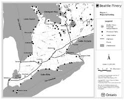 Ncc Map Beattie Pinery Provincial Park Management Plan Ontario Ca
