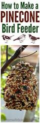best 25 diy bird feeder ideas on pinterest bird feeders diy