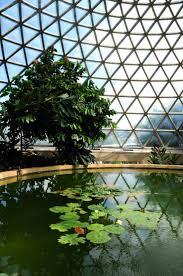 Brisbane Botanic Gardens Mount Coot Tha by 109 Best Brisbane Images On Pinterest Brisbane Queensland