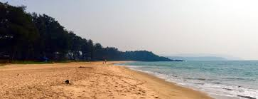 resorts in talpona beach goa houses cottages and restaurants
