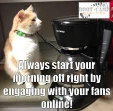 Monday Cat Meme - social media cat meme monday part 12